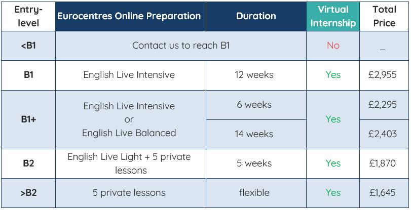 The Programme Option - Virtual Internship